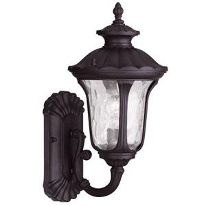 Oxford Bronze 15.5-Inch One Light Outdoor Wall Lantern