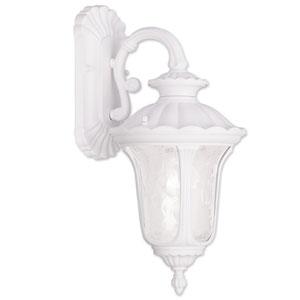 Livex Lighting 7849-07 Oxford 1-Light Outdoor Hanging Lantern Bronze