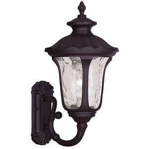 Oxford Bronze 18-Inch One Light Outdoor Wall Lantern