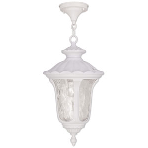 Oxford White 17.5-Inch One Light Outdoor Chain Hung Pendant