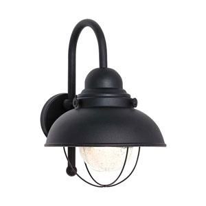 Sebring Outdoor Wall-Mounted Lantern