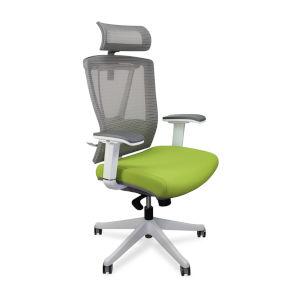 Autonomous Green Premium Ergonomic Office Chair