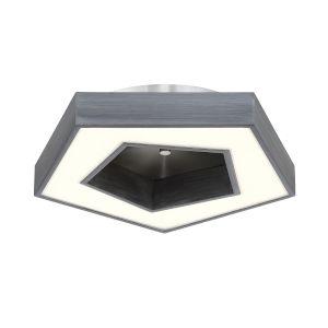 Pentex Charcoal Gray LED Flush Mount