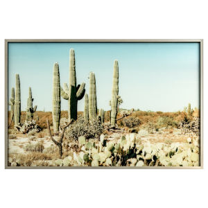 Brown Blue and Green 47-Inch Saguaro Landscape