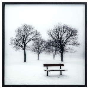 Black and White 32-Inch Winters Morning Fog I Landscape