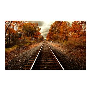Autumn Rails Print