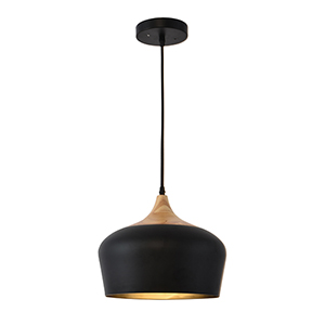 Noir Black One-Light Pendant