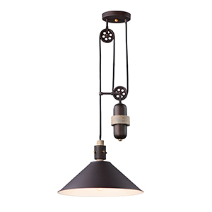 Tucson Oil Rubbed Bronze and Weathered Wood One-Light Adjustable Pendant
