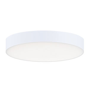 Trim White One-Light 5-Inch ADA LED Flush Mount