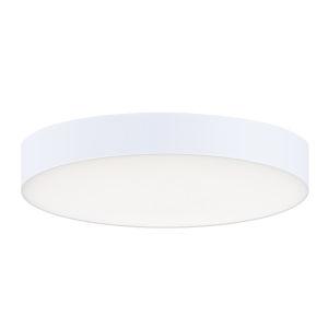 Trim White One-Light 5-Inch ADA LED Flush Mount