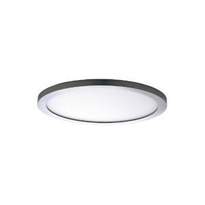 Chip Satin Nickel 3000K 5-Inch Led One-Light Flush Mount with Polycarbonate Shade