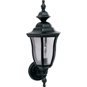Madrona Black Cast One-Light Outdoor Wall Lantern