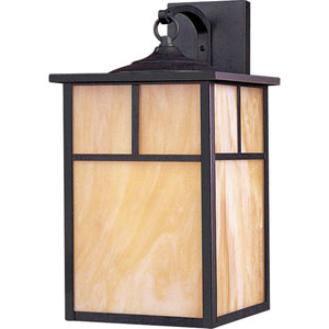 Coldwater Burnished One-Light Outdoor Wall Mount with Honey Glass
