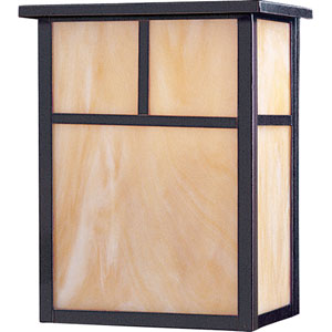 Coldwater EE Fluorescent Burnished 11-Inch High Two-Light Outdoor Wall Mount