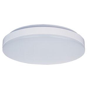 Profile EE White One-Light LED Thirteen-Inch Flushmount