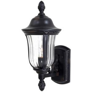 Morgan Park Outdoor Wall-Mounted Lantern