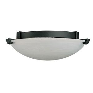 Roosevelt Graphite 70-Inch One-Light Halogen Ceiling Fan Light Kit