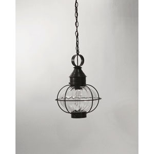 Onion Dark Brass One-Light 12-Inch Outdoor Pendant with Optic Glass