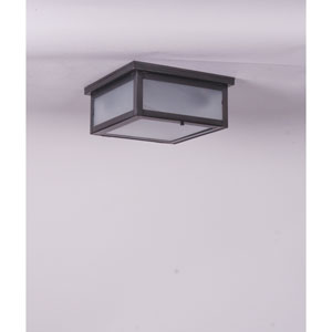 Williams Dark Brass Two-Light Outdoor Flush Mount with Frosted Glass