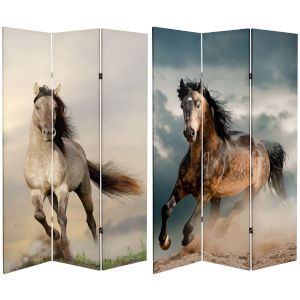 Tall Double Sided Galloping Horse Multicolor Canvas Room Divider