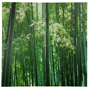 Bamboo Canvas Wall Art, Width - 31.5 Inches