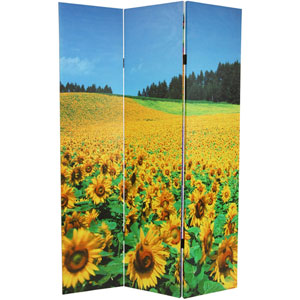 Six Ft. Tall Floral Double Sided Room Divider, Width - 48 Inches