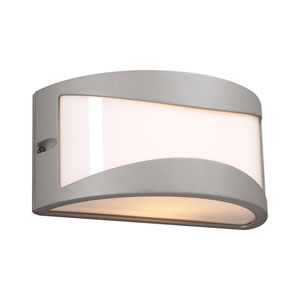 Baco One-Light Silver Outdoor Wall Light
