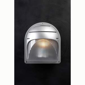 Delphi Architectural Silver Wall Mounted Outdoor Light