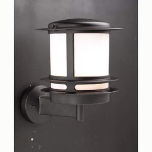 Tusk Black Wall Mounted Outdoor Light