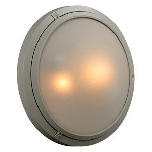 Ricci-Ii Silver Two-Light Outdoor Wall Mount Fixture