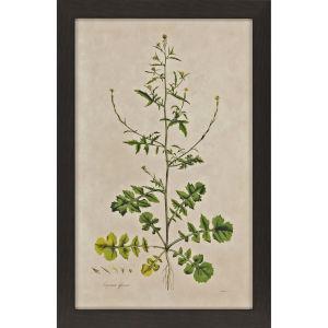 Wispy Floral I Green Framed Art