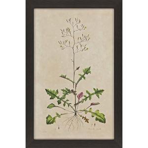 Wispy Floral II Green Framed Art