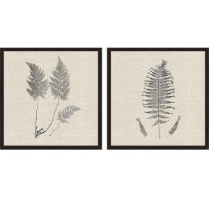 Libby Langdon Modern Ferns I Neutral Framed Wall Art, Set of 2