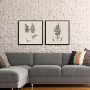 Libby Langdon Modern Ferns I Neutral Framed Wall Art, Set of 2