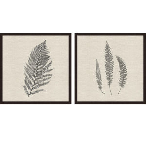 Libby Langdon Modern Ferns II Neutral Framed Wall Art, Set of 2