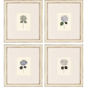Hydrangea Minis Blue Framed Wall Art, Set of 4