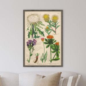 Botanica II Green Framed Wall Art
