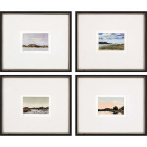 Land Study I Multicolor Framed Art, Set of Four