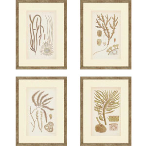 Sea II by Ziffer: 18 x 13-Inch Framed Wall Art, Set of Four