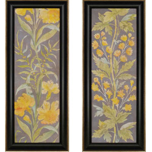 June Florals by Meagher: 41 x 17-Inch Framed Wall Art, Set of Two