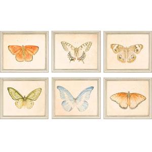 Butterflies by Meagher: 12 x 14-Inch Framed Wall Art, Set of Six