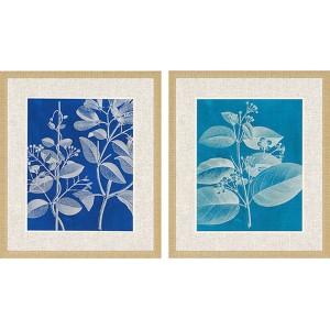 Modern Botany I: 28 x 24 Framed Giclee Printed, Set of 2
