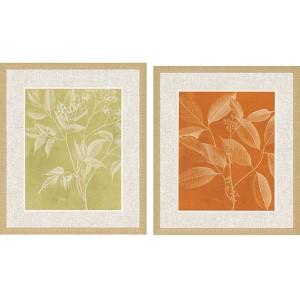 Modern Botany II: 28 x 24 Framed Giclee Printed, Set of 2