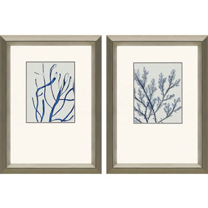 Indigo Coral II: 25 x 19 Framed Print, Set of Two