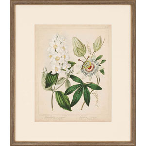 Cottage Florals II by Edwards: 26 x 30-Inch Framed Art