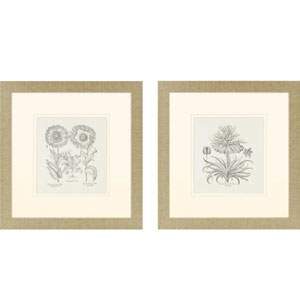 Tordilion/Corona: 27 x 26 Framed Print, Set of Two