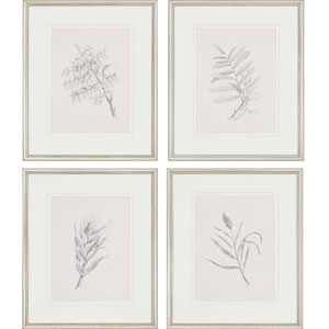 Foliage by Mendez: 25 x 21-Inch Framed Wall Art, Set of Four
