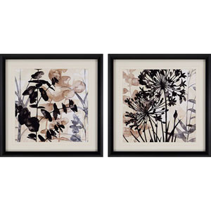 Natural Botanical I by Pluch: 26 H x 26 W-Inch Framed Art , Set of Two