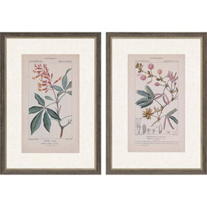 Botanique in Pink II by Turpin: 35 H x 25 W-Inch Framed Art , Set of Two