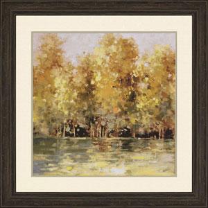 Golden Woods by Stewart: 38 H x 38 W-Inch Framed Art